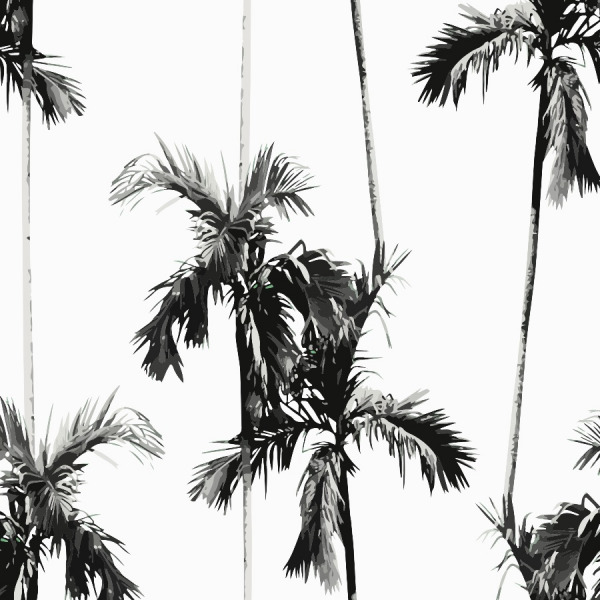 palm tree wallpaper, black and white peel and stick by The Wallberry