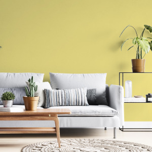 Yellow Solid Color Wallpaper in peel and stick